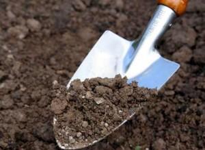 Весенняя обработка почвы