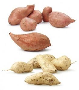 Клубни сладкого картофеля различной формы