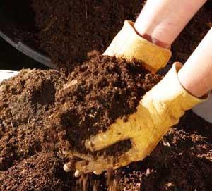 Подкормка почвы удобрениями