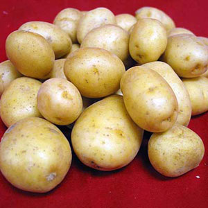 Продам картофель 50р Томск.