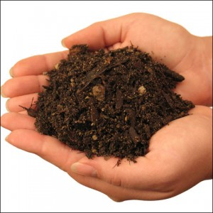Влажность почвы
