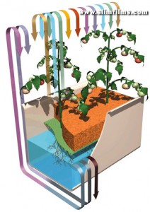 Схема гидропонной установки