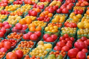 Различные сорта помидоров
