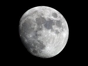 Лунные циклы для садоводов