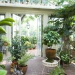 Остекленный зимний сад