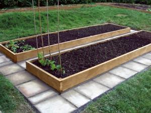Как правильно делать грядки на огороде для моркови и лука 33