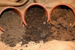 Различные типы почвы