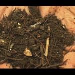 Органическое удобрение - перегной