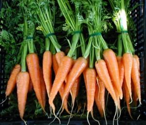 Морковь в магазине